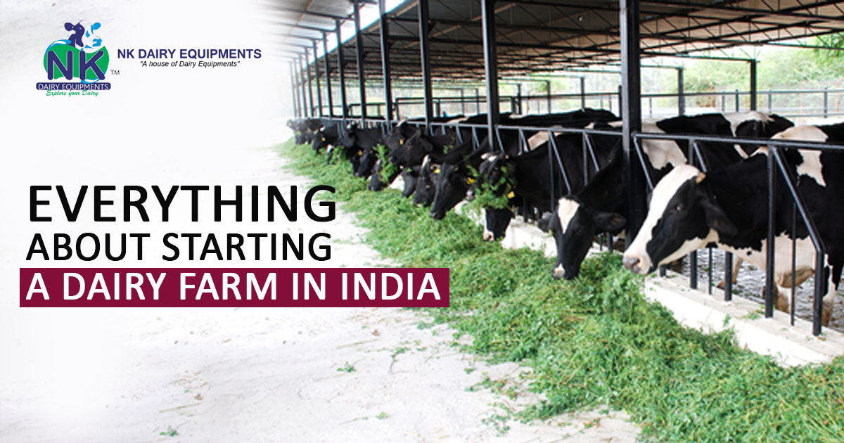 Everything About Starting A Dairy Farm in India