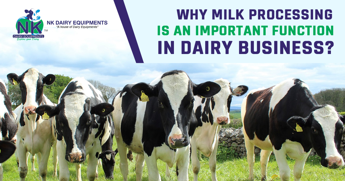 Why Milk Processing is an Important function in Dairy Business copy