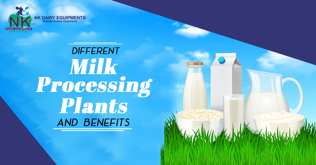 Different Milk Processing Plants and benefits